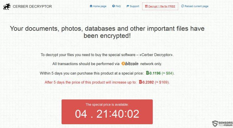 cerber-payment-page-sensorstechforum-768x423